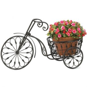 Iron Tricycle Plant Stand