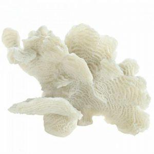 Tabletop Coral Decor